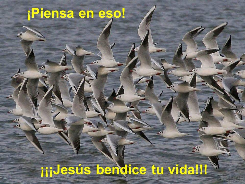 ¡Piensa en eso! ¡¡¡Jesús bendice tu vida!!!