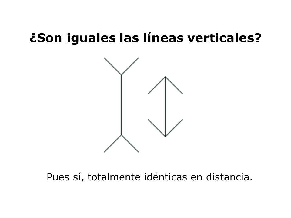 ¿Son iguales las líneas verticales
