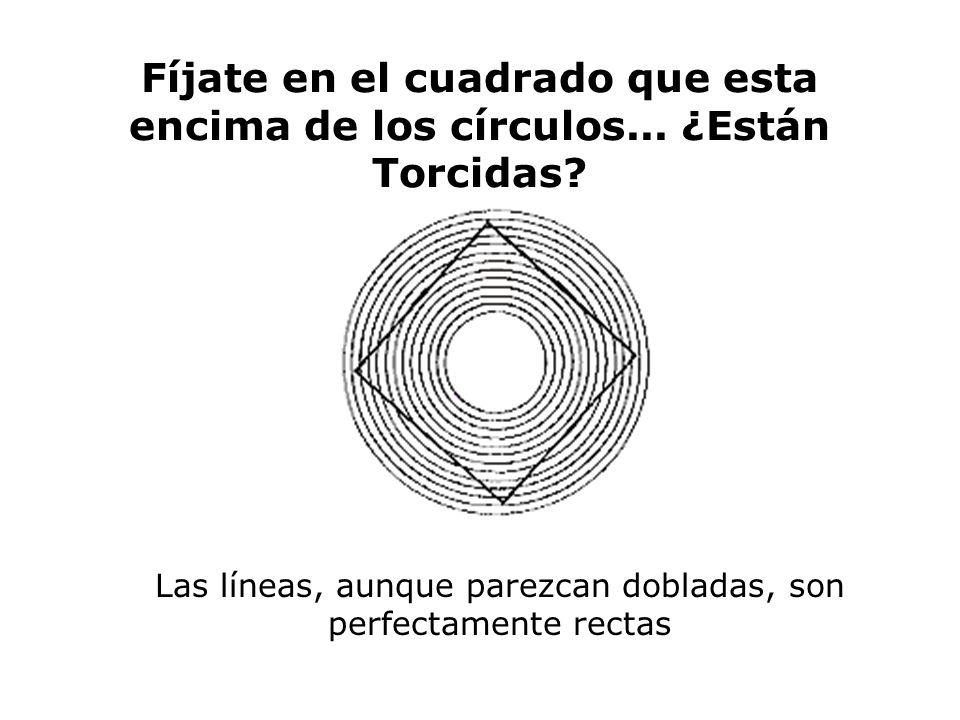 Las líneas, aunque parezcan dobladas, son perfectamente rectas