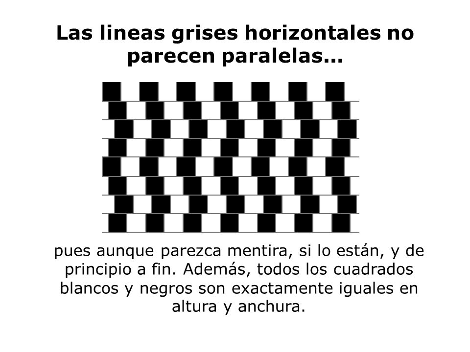 Las lineas grises horizontales no parecen paralelas...