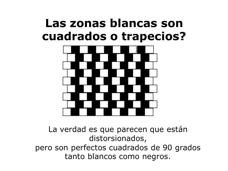 Las zonas blancas son cuadrados o trapecios