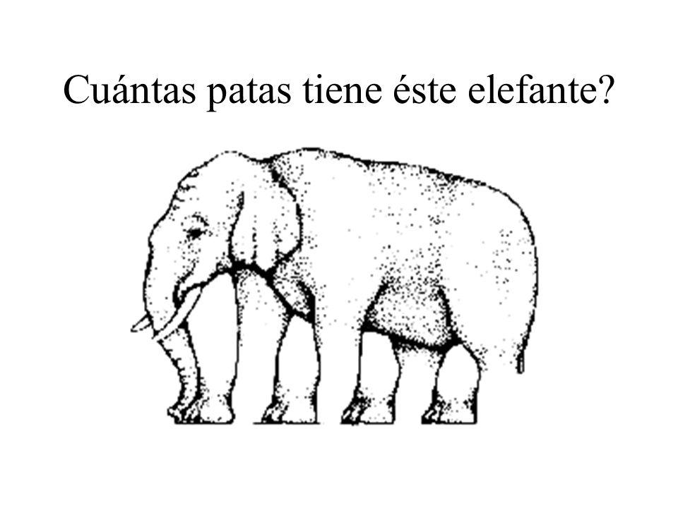Cuántas patas tiene éste elefante
