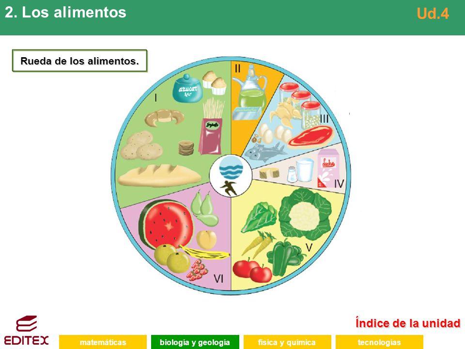 2. Los alimentos Ud.4 Índice de la unidad Rueda de los alimentos.