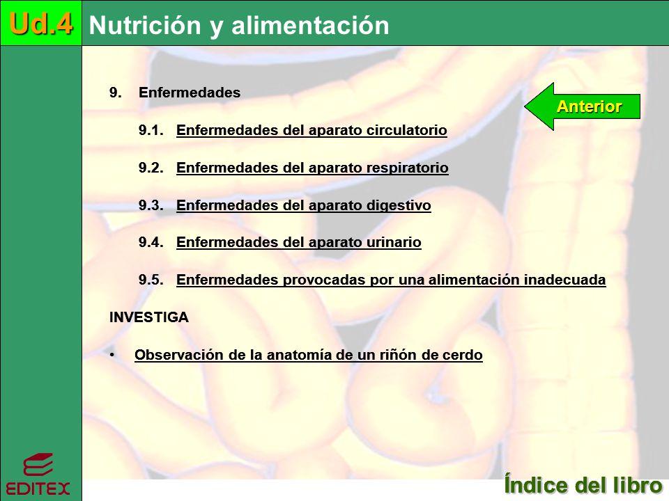 Ud.4 Ud.4 Ud.4 Nutrición y alimentación Nutrición y alimentación