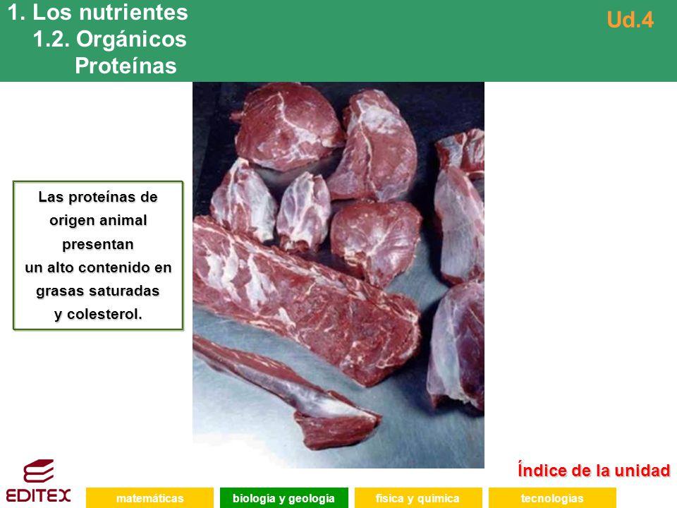 Los nutrientes 1.2. Orgánicos Ud.4 Proteínas Índice de la unidad