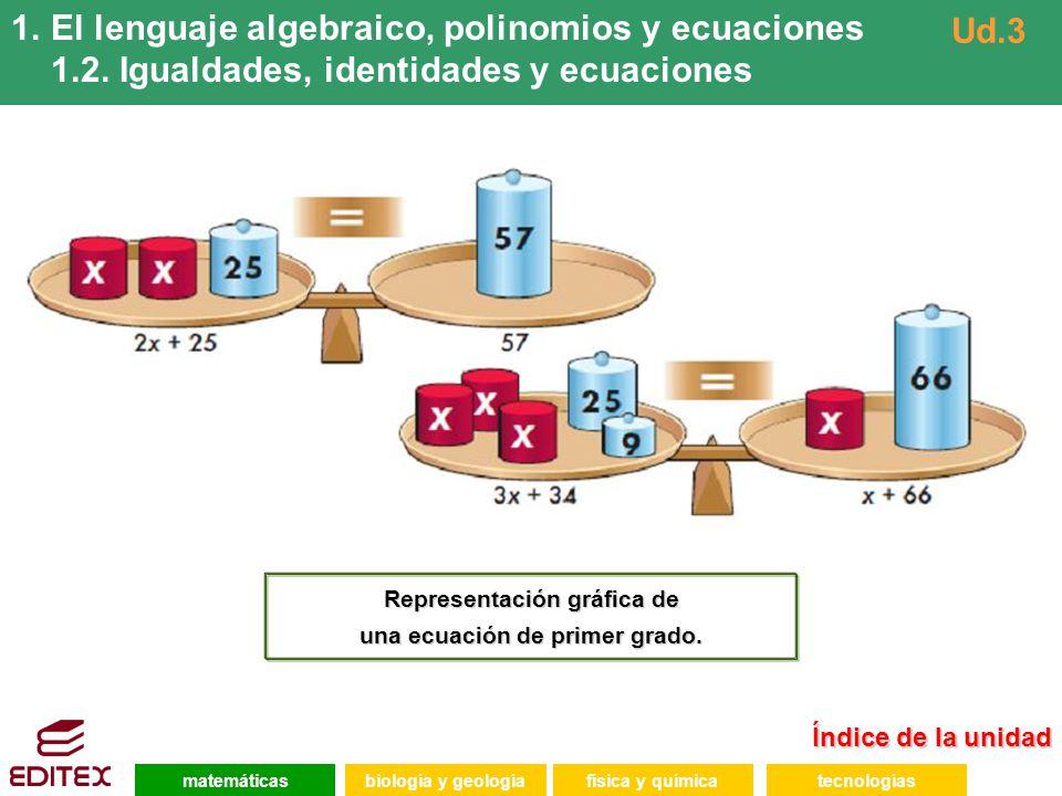 Representación gráfica de una ecuación de primer grado.