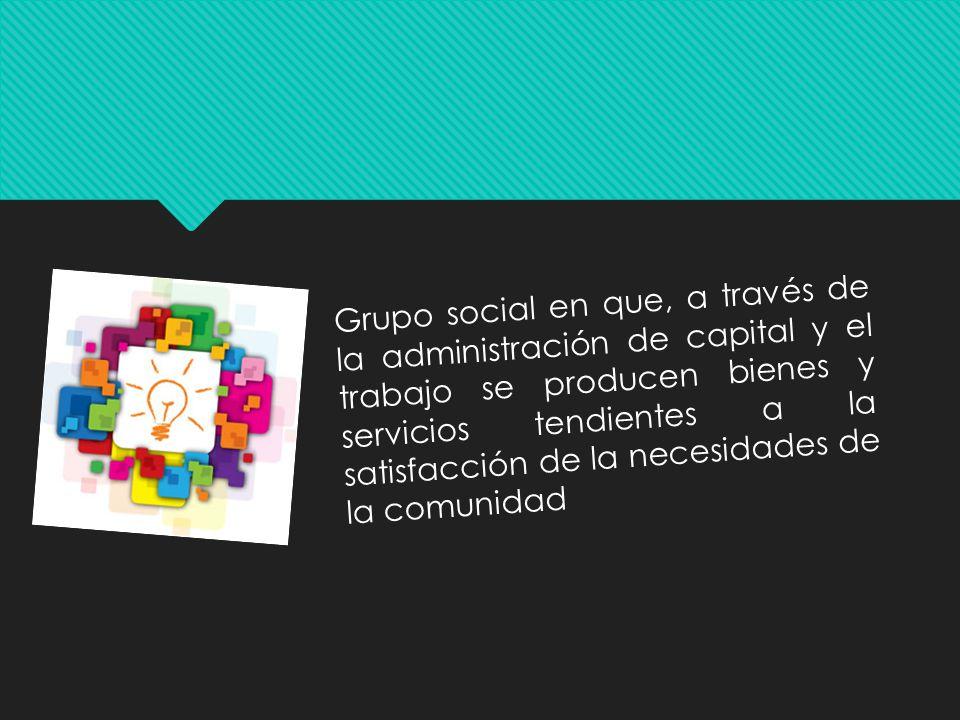 Grupo social en que, a través de la administración de capital y el trabajo se producen bienes y servicios tendientes a la satisfacción de la necesidades de la comunidad