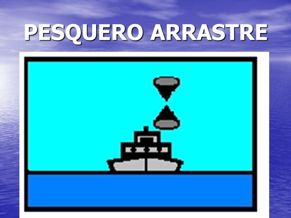 PESQUERO ARRASTRE