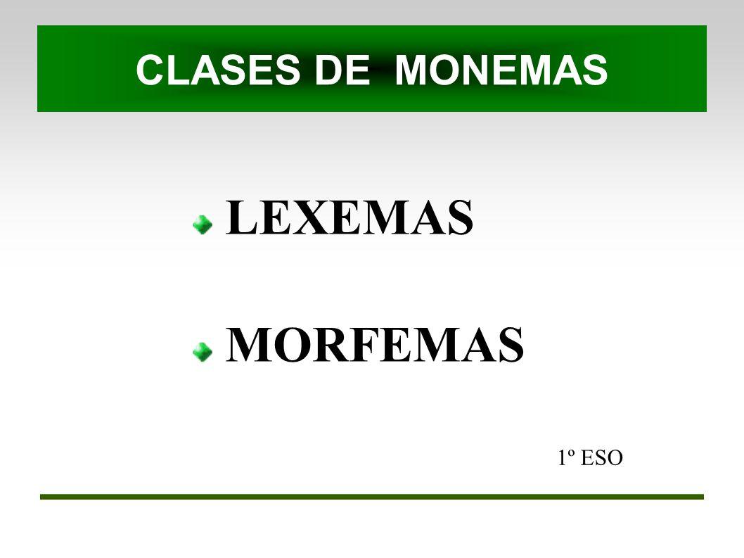 CLASES DE MONEMAS LEXEMAS MORFEMAS 1º ESO