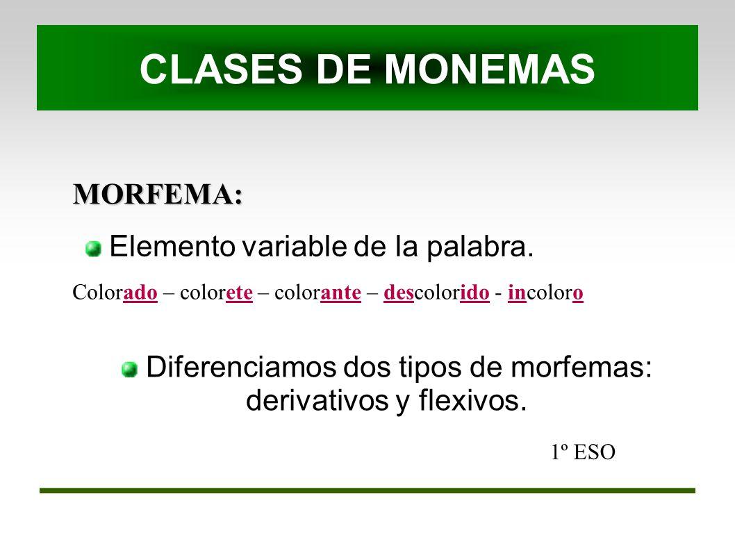 Diferenciamos dos tipos de morfemas: derivativos y flexivos.