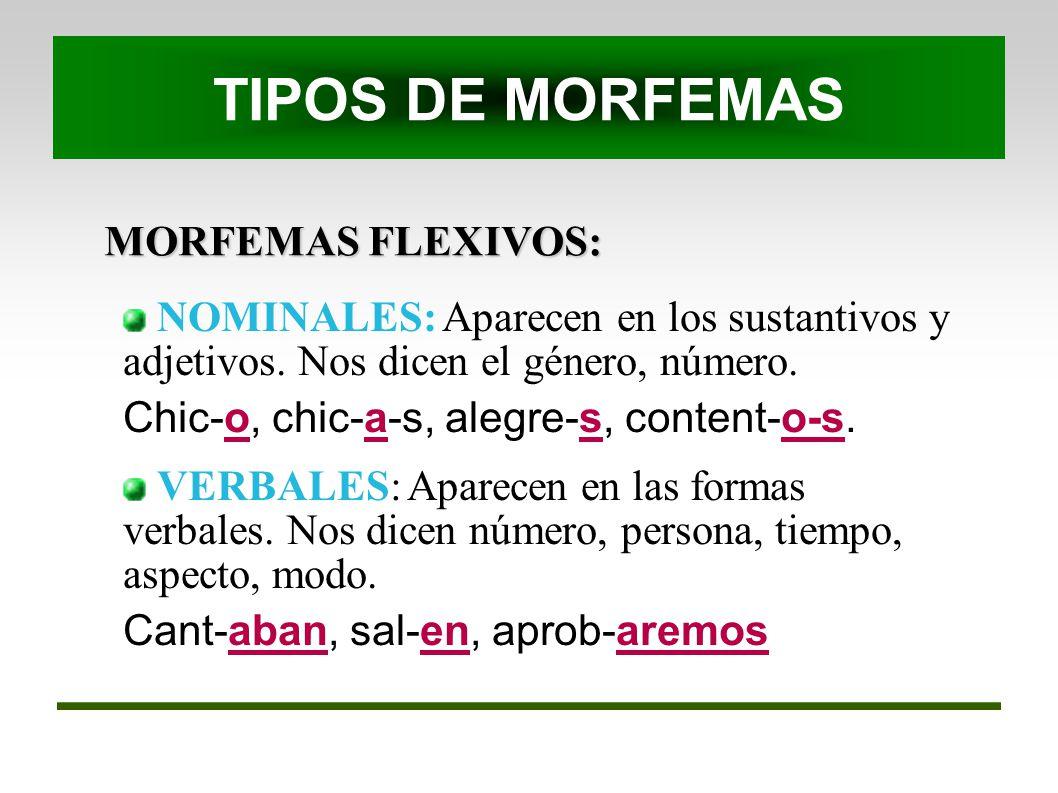TIPOS DE MORFEMAS MORFEMAS FLEXIVOS: