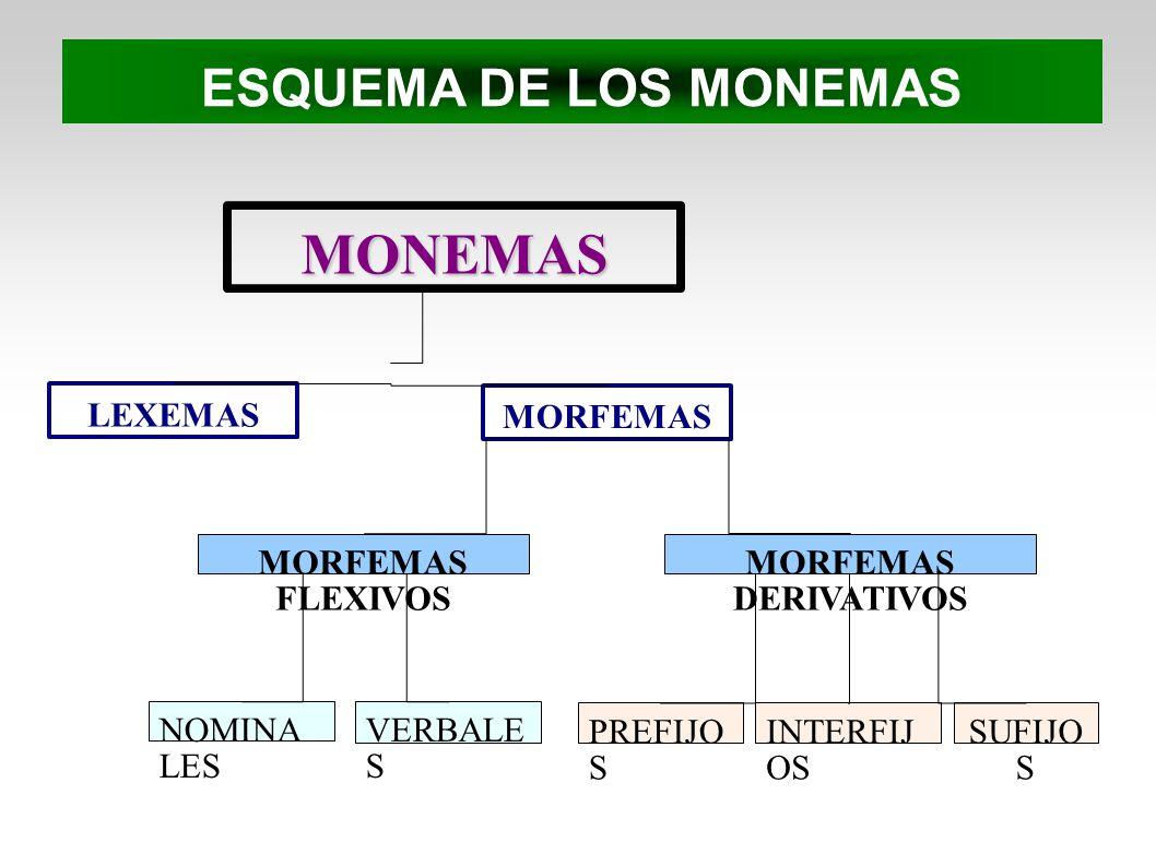 ESQUEMA DE LOS MONEMAS MONEMAS LEXEMAS MORFEMAS MORFEMAS FLEXIVOS