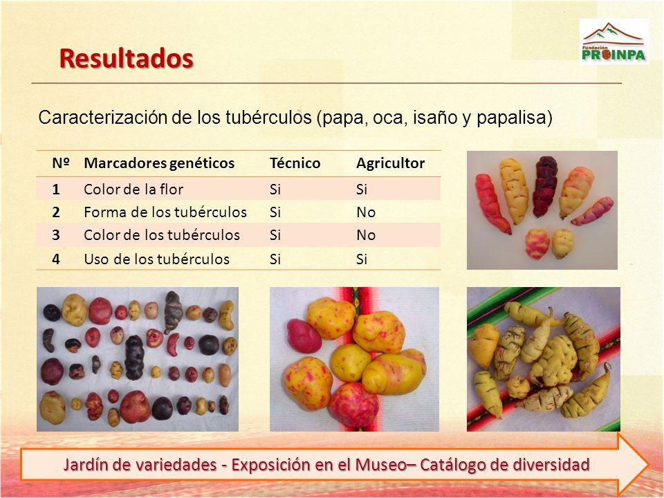 Jardín de variedades - Exposición en el Museo– Catálogo de diversidad