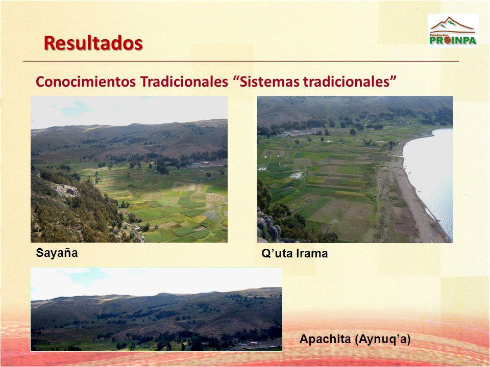 Resultados Conocimientos Tradicionales Sistemas tradicionales Sayaña