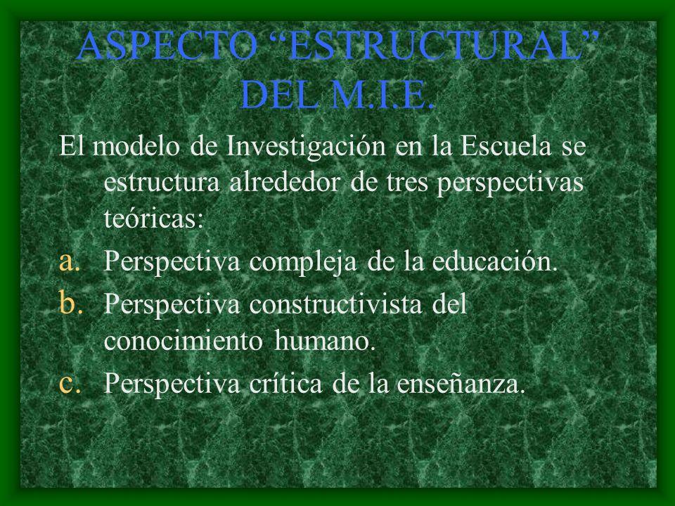 ASPECTO ESTRUCTURAL DEL M.I.E.