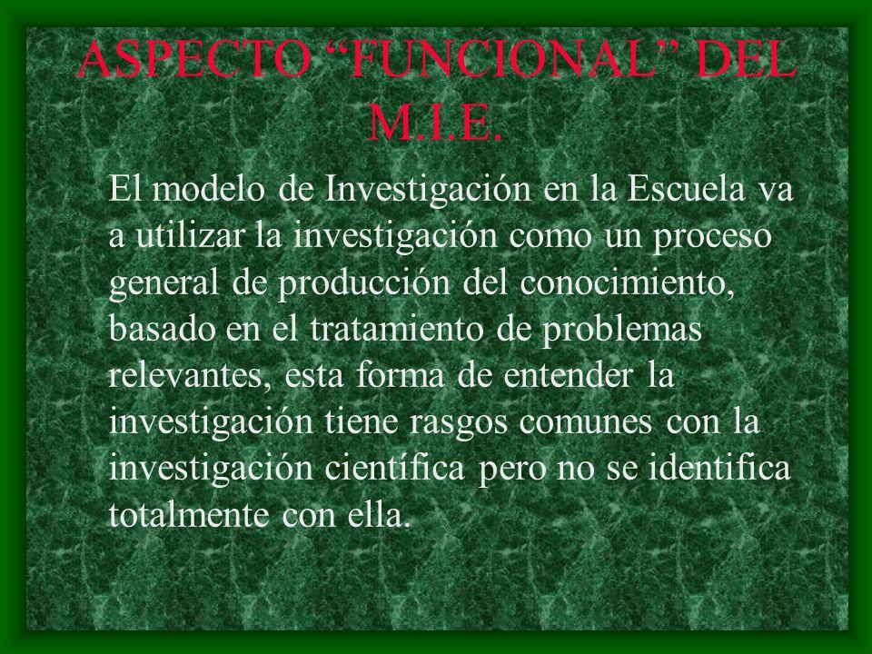 ASPECTO FUNCIONAL DEL M.I.E.
