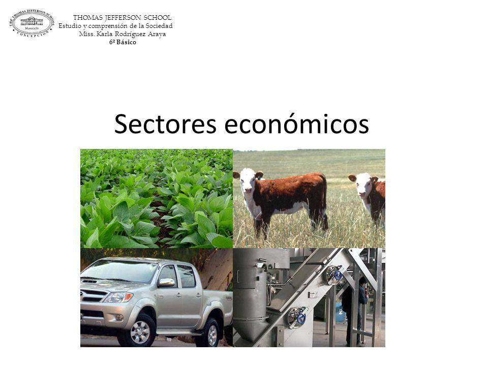 Sectores económicos THOMAS JEFFERSON SCHOOL
