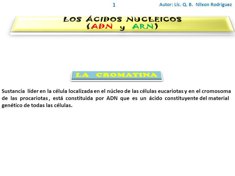 LOS ÁCIDOS NUCLEICOS (ADN y ARN) LA CROMATINA 1