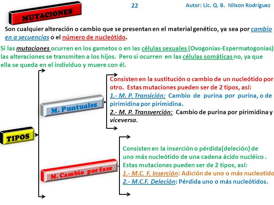 MUTACIONES M. Puntuales