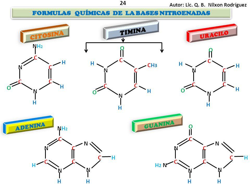 FORMULAS QUÍMICAS DE LA BASES NITROENADAS