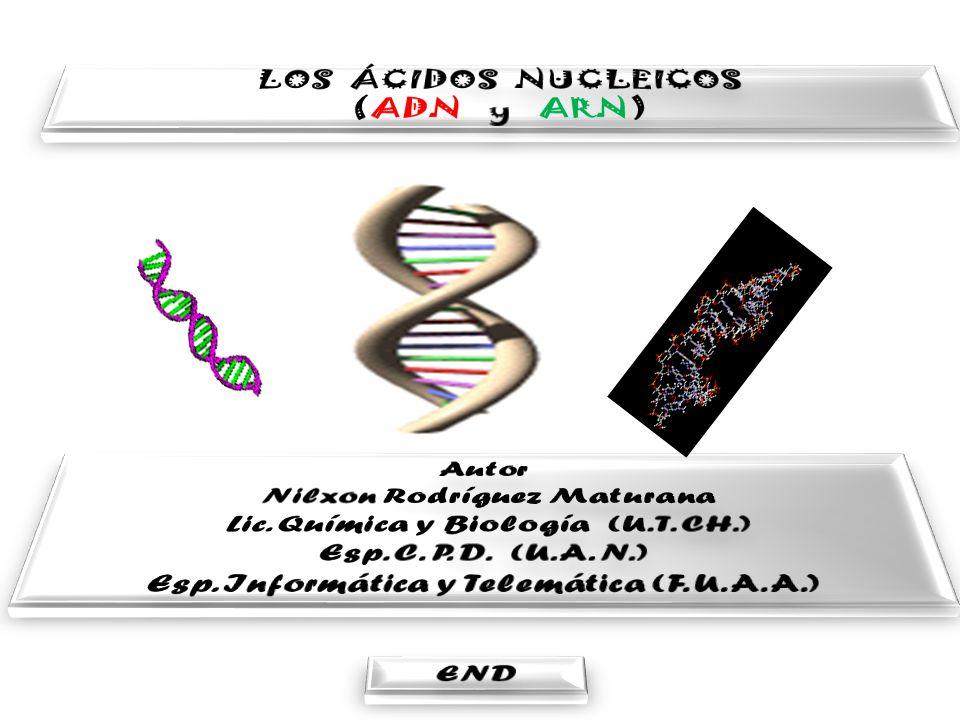 Nilxon Rodríguez Maturana Lic. Química y Biología (U. T. CH.)