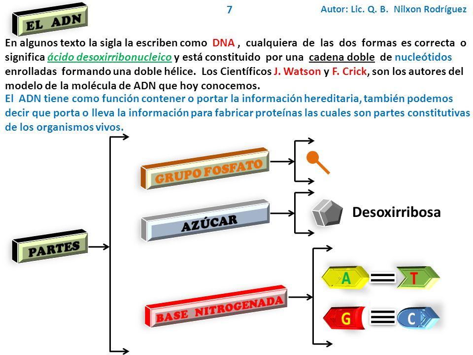 A T G C Desoxirribosa EL ADN GRUPO FOSFATO AZÚCAR PARTES 7