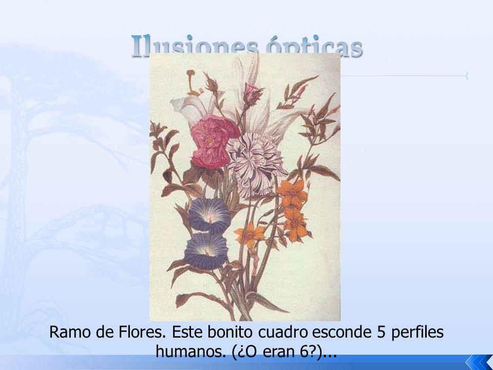 Ilusiones ópticas Ramo de Flores. Este bonito cuadro esconde 5 perfiles humanos. (¿O eran 6 )...