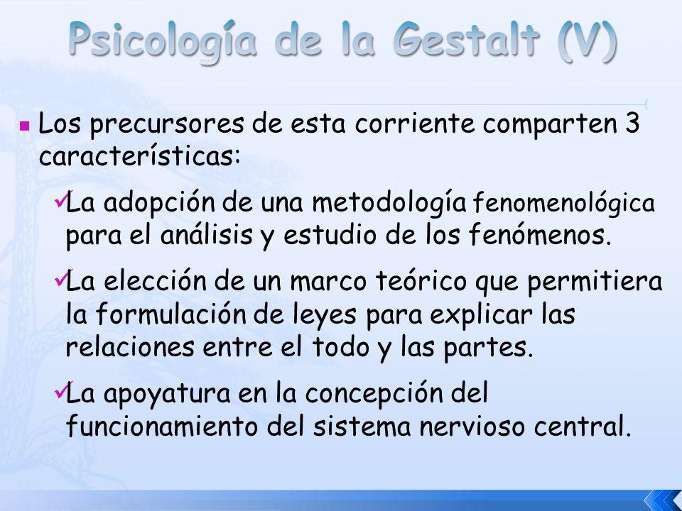 Psicología de la Gestalt (V)