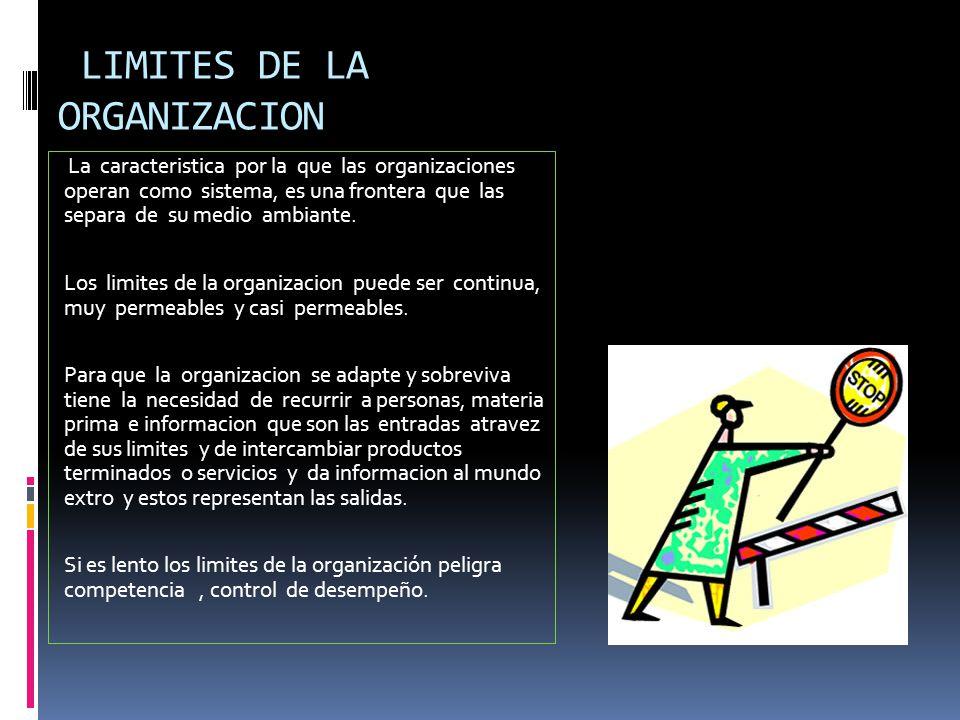LIMITES DE LA ORGANIZACION