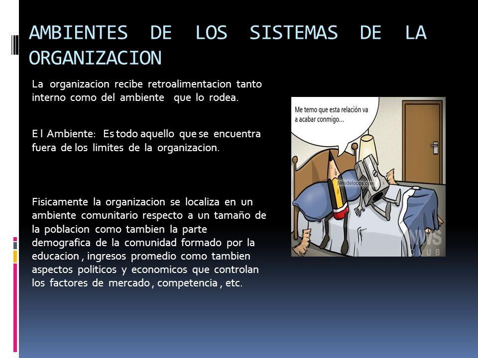 AMBIENTES DE LOS SISTEMAS DE LA ORGANIZACION