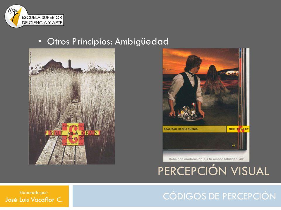 Percepción visual Otros Principios: Ambigüedad e CÓDIGOS DE PERCEPCIÓN