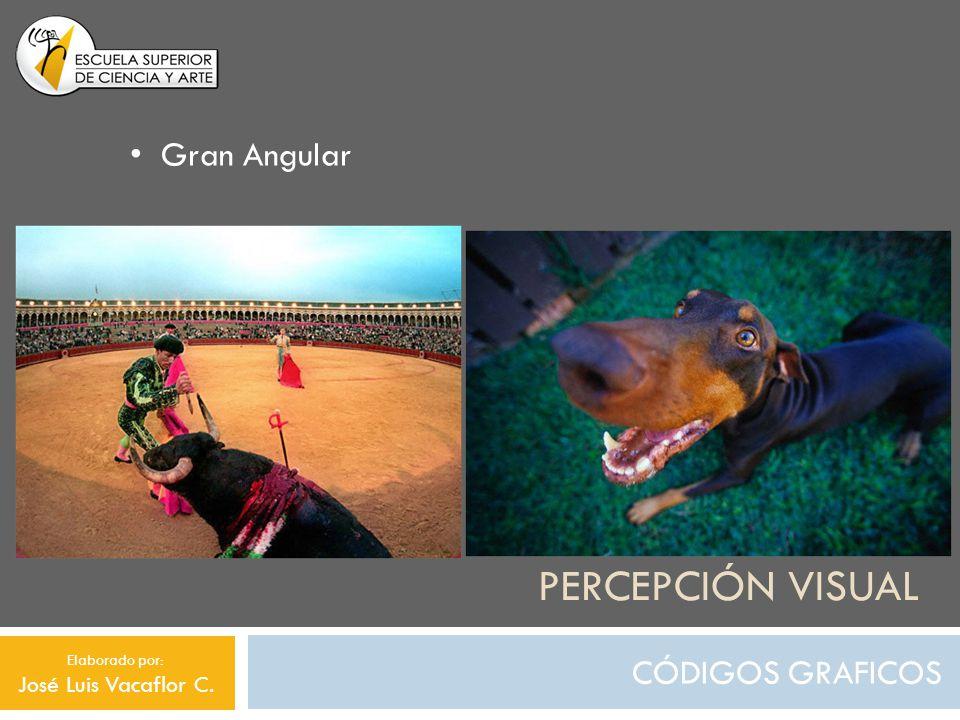 Percepción visual Gran Angular CÓDIGOS GRAFICOS José Luis Vacaflor C.