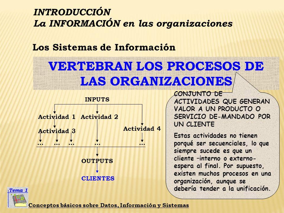 VERTEBRAN LOS PROCESOS DE LAS ORGANIZACIONES