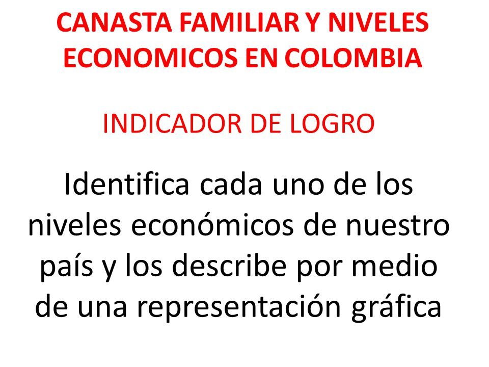 CANASTA FAMILIAR Y NIVELES ECONOMICOS EN COLOMBIA