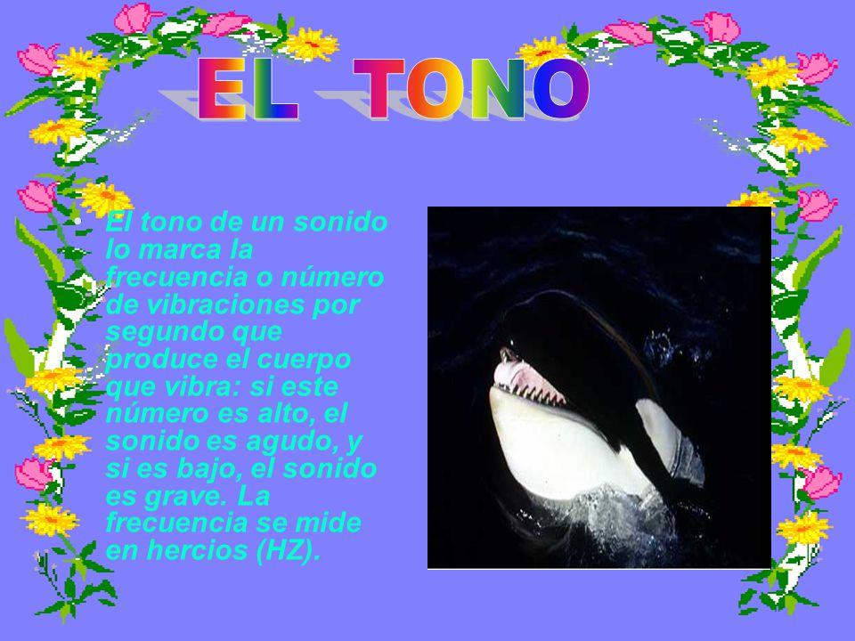 EL TONO.