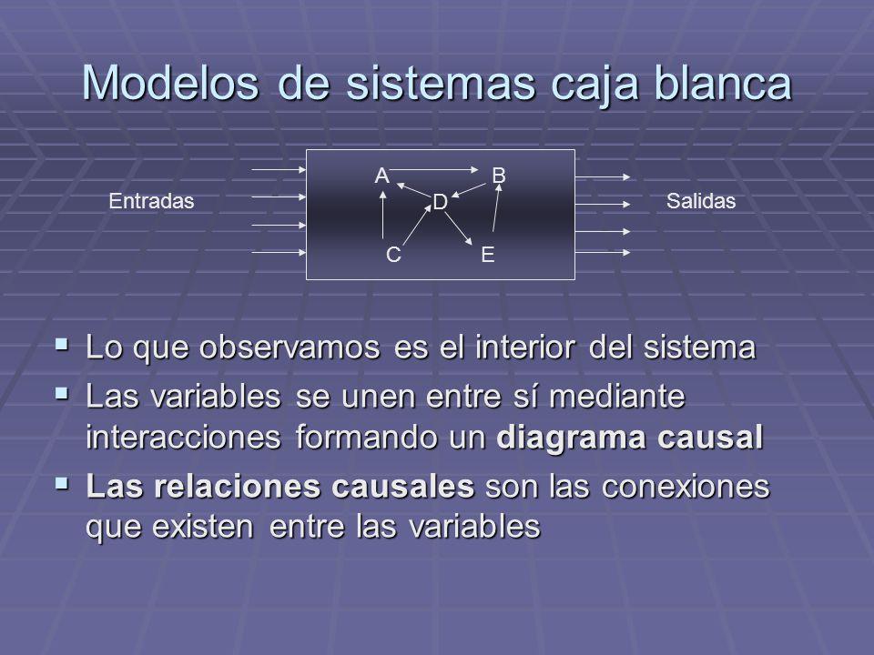 Modelos de sistemas caja blanca
