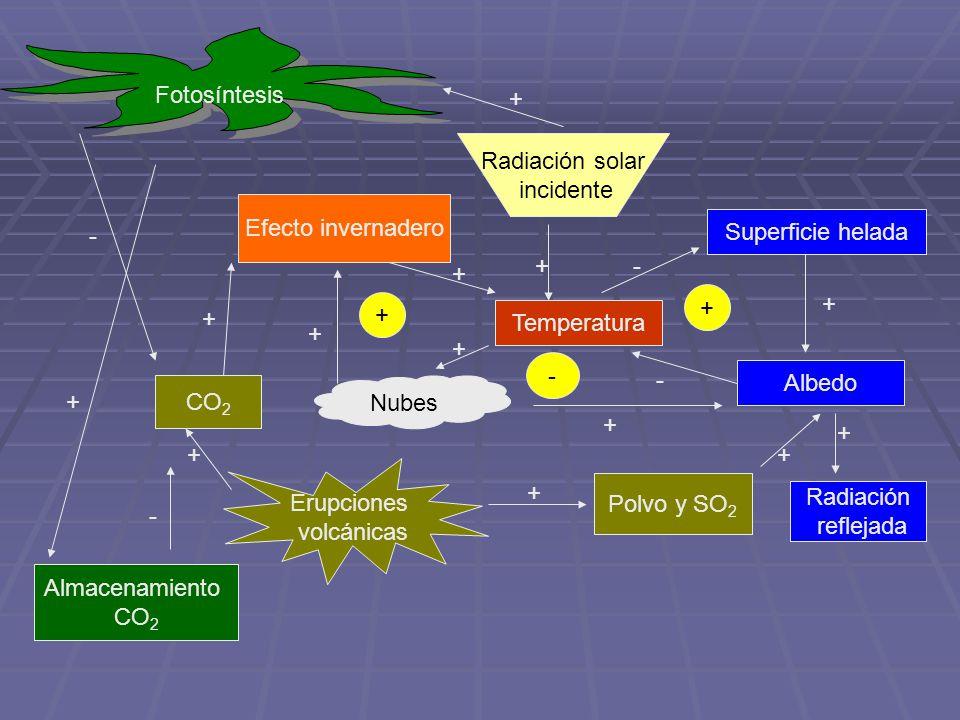 Fotosíntesis + Radiación solar. incidente. Efecto invernadero. Superficie helada. - + - + +