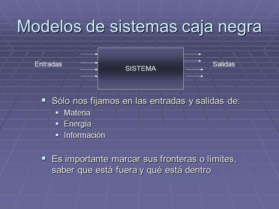 Modelos de sistemas caja negra