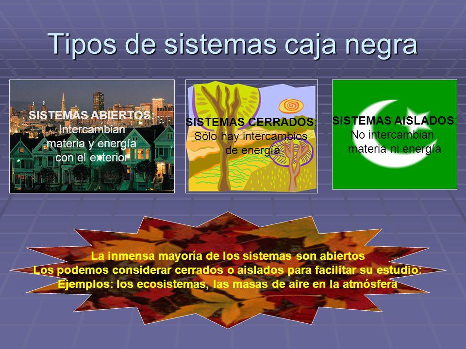 Tipos de sistemas caja negra