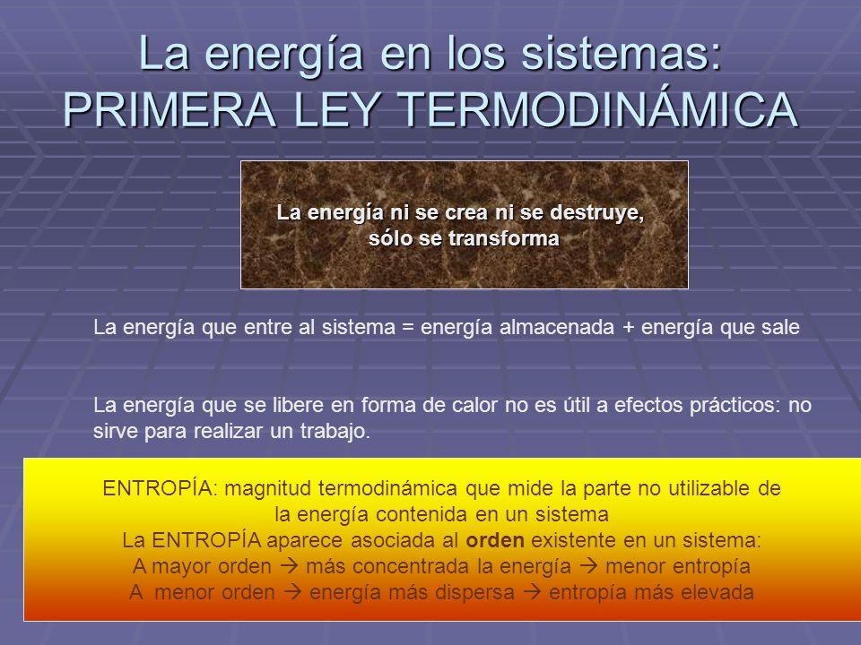La energía en los sistemas: PRIMERA LEY TERMODINÁMICA