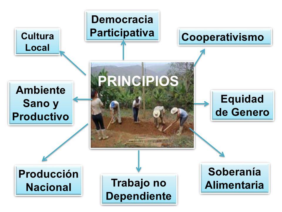 PRINCIPIOS Democracia Participativa Cooperativismo
