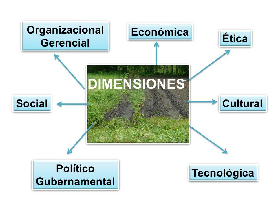 DIMENSIONES Organizacional Gerencial Económica Ética Social Cultural