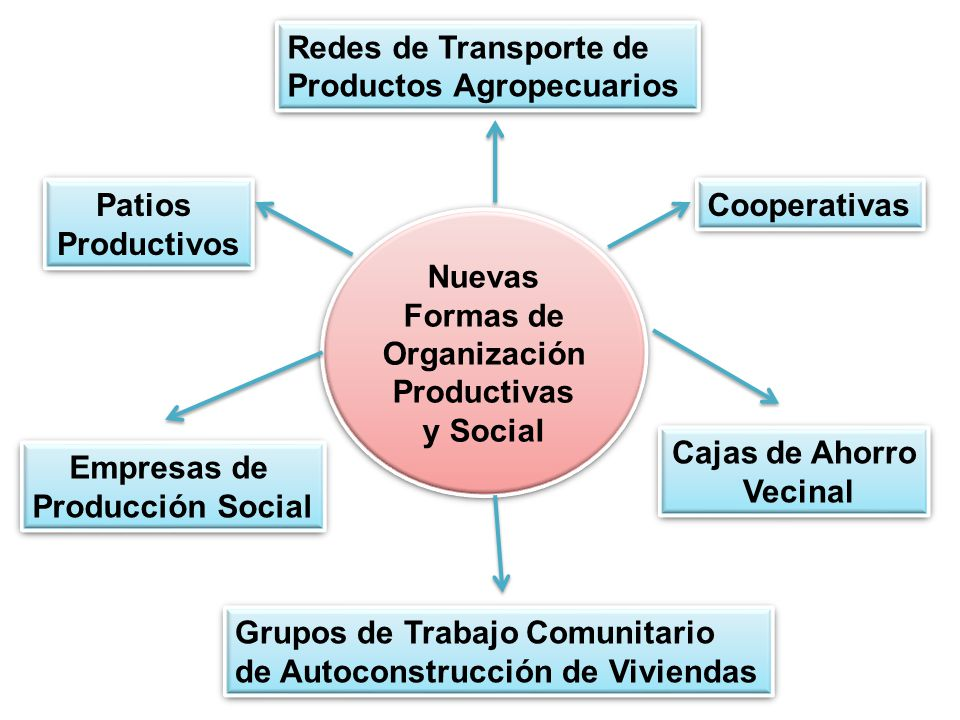 Nuevas Formas de Organización Productivas y Social