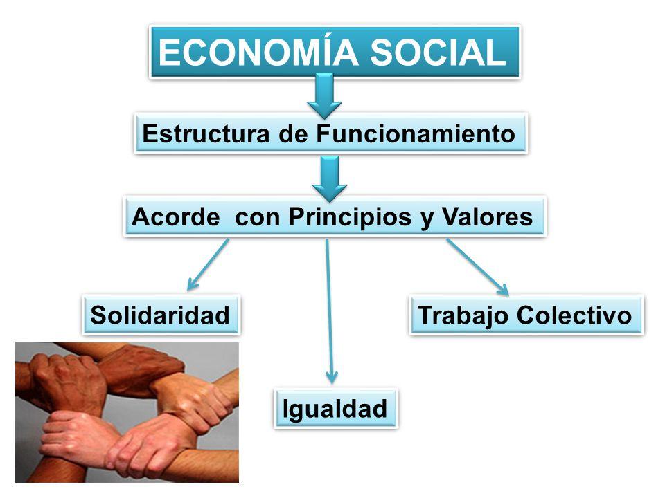 ECONOMÍA SOCIAL Estructura de Funcionamiento