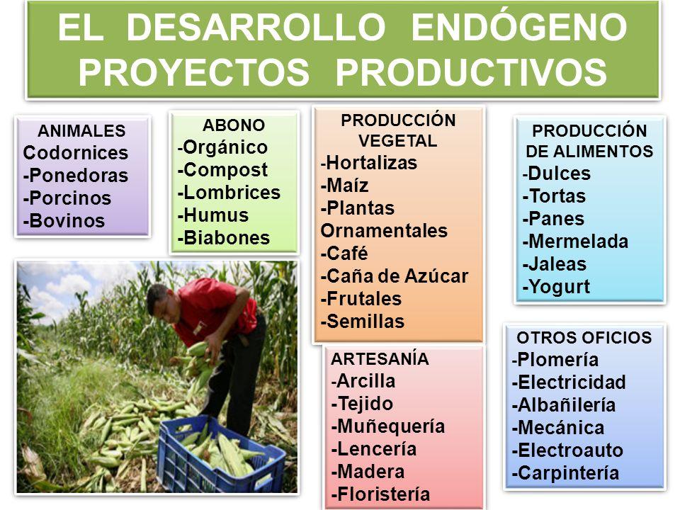 EL DESARROLLO ENDÓGENO PROYECTOS PRODUCTIVOS PRODUCCIÓN DE ALIMENTOS