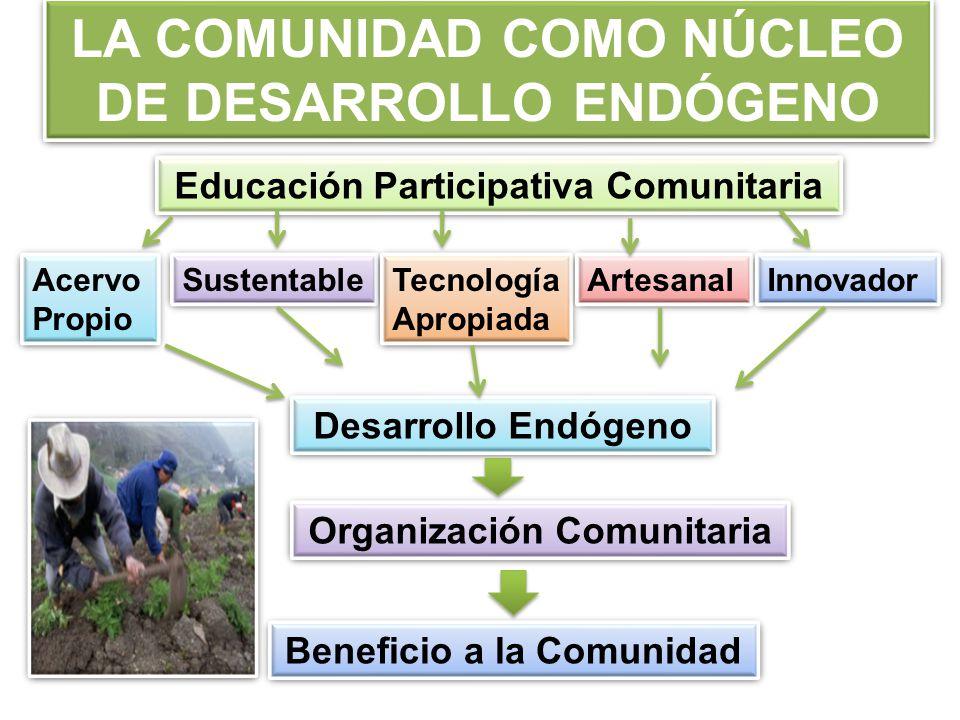 LA COMUNIDAD COMO NÚCLEO DE DESARROLLO ENDÓGENO