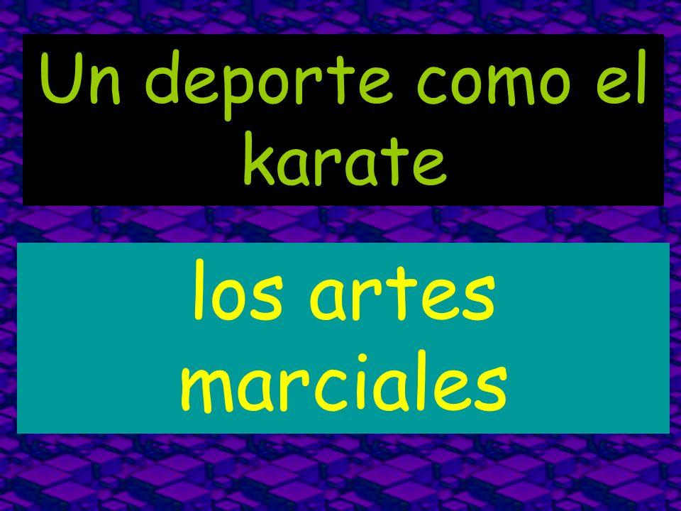 Un deporte como el karate