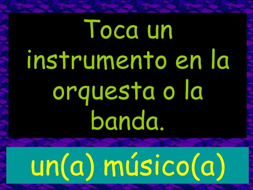 Toca un instrumento en la orquesta o la banda.