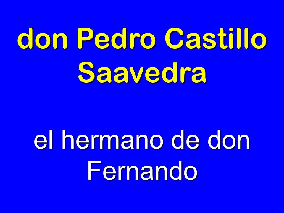 don Pedro Castillo Saavedra