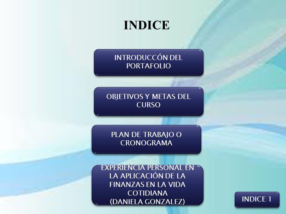 INDICE INTRODUCCÓN DEL PORTAFOLIO OBJETIVOS Y METAS DEL CURSO